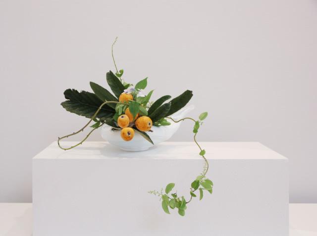 7月の花「クマヤナギ(クロウメモドキ)」